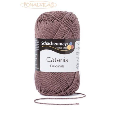 Catania - Teddy