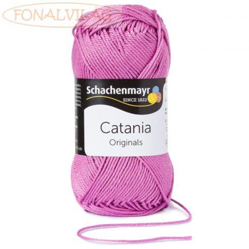 Catania - Azálea