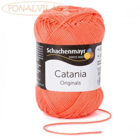 Catania - Korall